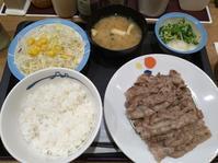 4/11夜勤前飯松屋牛焼肉W定食¥900 - 無駄遣いな日々