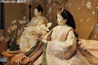 後藤由香子想が重なるひな人形 - 四季彩の部屋Ⅱ