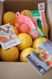 フロリダグレープフルーツをもっと楽しむオンラインレッスン - The Lynne's MealtimesⅡ