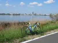 霞ヶ浦湖岸を一周しながらチューリップをみてきました。 - ペダルを踏みしめて進む
