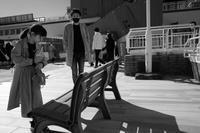 春の日 20210410 - Yoshi-A の写真の楽しみ