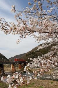 2021年津山線のタラコと桜 - ローカル無人駅