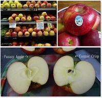 林檎食べ比べ横たわるマンモスサーモンキッシュ - f's note ak