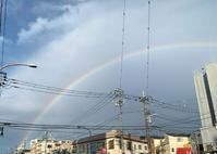 4月15日 「虹始見る」という日・木蓮(モクレン) - 煎茶道方円流~東京東支部~