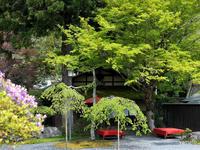 二ノ瀬から貴船神社あたりをぶらりと - ぎゃらりー竹斎堂