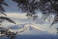 【よりみち編】朝景色 - 長岡・夢いっぱい公園