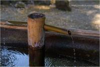 寺院の境内 - muku3のフォトスケッチ