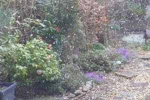 4月に雪が降ったので -