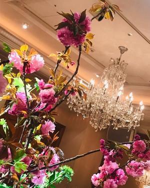 美しく咲く花のように「自分のまま」で生きる☆ - ジブンノミカタ