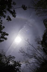 ハロ-halo-日暈 - Yoshi-A の写真の楽しみ
