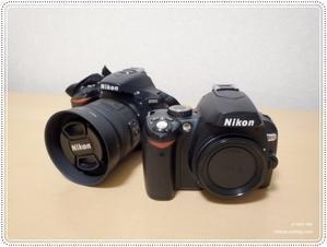 Nikon D5600 - e-very day  フリーアナウンサー フジオカエリのフォト日記