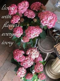本日も張り切ってSTART‼︎ -  Flower and cafe 花空間 ivory (アイボリー)