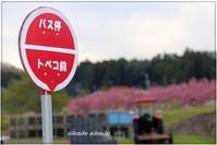 おもしろい名前のバス停 - 今が一番
