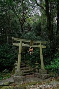 山の神神社 - Mark.M.Watanabeの熊本撮影紀行