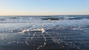 波の花。 -