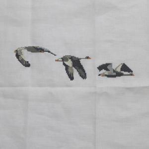 Uhlenhof 灰色雁 02 - Point de X のこと