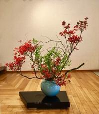 スタジオの花 - 東京いけばな日記 花と暮らしと生活と