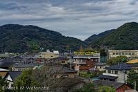 幸福の黄色いハンカチ - Mark.M.Watanabeの熊本撮影紀行