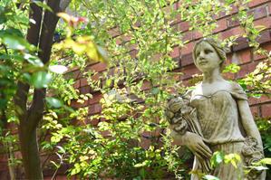 花木が次々と開花しています。 - 薔薇好き花好き庭が好き?元英国在住・アートセラピストが造る癒しの庭
