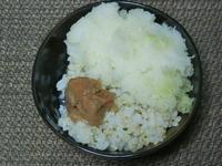 発芽玄米ごはんに大根おろしと梅干 - 食写記 ~Shokushaki's Blog~