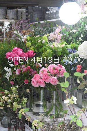 *いよいよ明日から今季オープンします * - Flower Firenze
