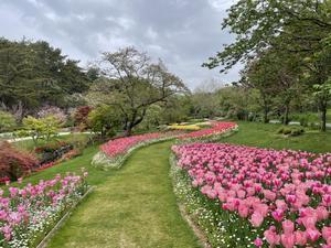 2021年4月 浜松旅行⑤ はままつフラワーパーク - いけたび2