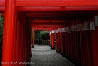 高橋稲荷神社-2 - Mark.M.Watanabeの熊本撮影紀行