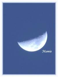昨夕のお月様 - おだやかに たのしく Que Sera Sera