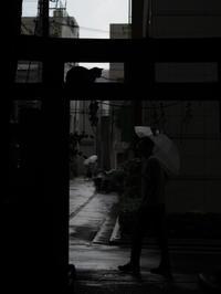 Tokyo Snap 84小野照先神社 - 花は桜木、