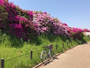 トーエー・デモンタブルの紹介 - Kiharu02 Blog