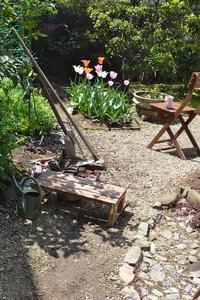 ぽかぽか陽気の庭仕事 - refresh-3