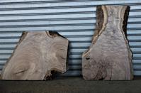 クラロウォルナット一枚板 - SOLiD「無垢材セレクトカタログ」/ 材木店・製材所 新発田屋(シバタヤ)