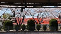 藤田八束博士の新型コロナ対策、コロナ禍対策としての学校閉鎖だけはダメ断固反対である、そんなコロナ対策が対策になるはずがない - 藤田八束の日記