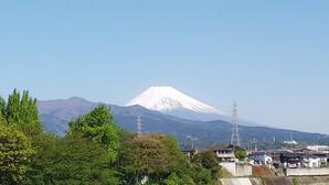 富士山&国産小麦など - 白い羽☆彡静岡県東部情報発信・・・PiPiPi♪