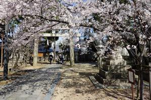 早春の三輪神社 - レトロな建物を訪ねて
