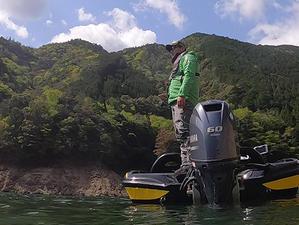 """池原ダムで『S.L.T. minnow 3.5""""』の中層攻略 - WaterLettuceのブログ"""