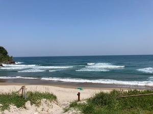 ビーチで見た笑えないある光景 - 海辺のカフェ&ペンション デルマー