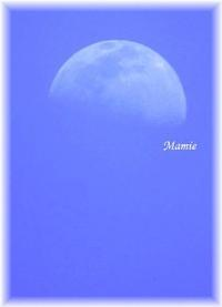 今日の月 - おだやかに たのしく Que Sera Sera