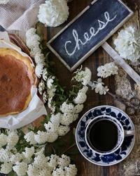 オオデマリとバスク風チーズケーキ - ゆきなそう  猫とガーデニングの日記