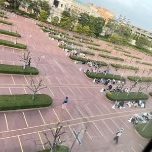 [テレビのカラクリ]まんぼう報道TDSは閑散? - 東京ディズニーリポート
