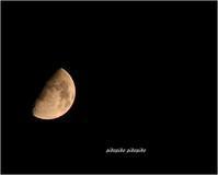 half-moon - 今が一番