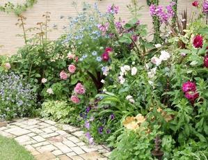 ◆ハルメク連載・・・第26回『春の庭に咲かせたい、おすすめの花9選』 - Soleilの庭あそび・・・布あそび♪