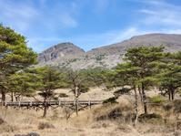 また、えびの高原へ~ノカイドウを探して - おでかけメモランダム☆鹿児島