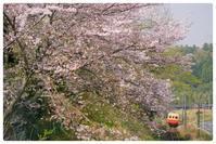 小湊鐵道(3月31日) - とまれみよⅡ