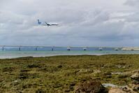 緑に期待 - 南の島の飛行機日記