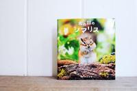 cute photo book* - Avenue No.8 Vol.2