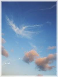白いお月様と雲の白鳥 - おだやかに たのしく Que Sera Sera