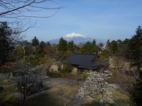 2021年5月の藤田記念庭園茶会開催のお知らせ - Tea Wave  ~幸せの波動を感じて~
