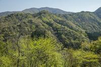 火燈、小倉谷、富士写ヶ岳ぐるっと一周 - 四季燦燦 癒し系~^^かも風景写真