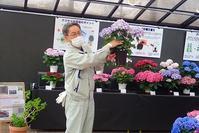休園のなか、開花情報をお伝え - 手柄山温室植物園ブログ 『山の上から花だより』